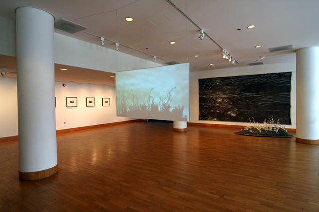 "Installation View, ""The Life of Perished Things"" 