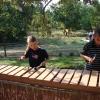 Meandering Marimba