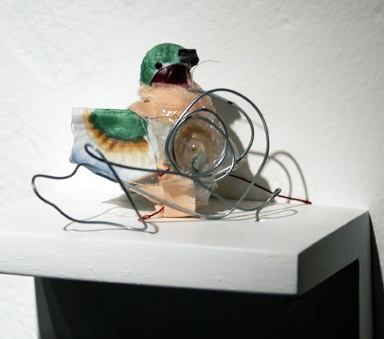 Dreams of Wings - bird 6