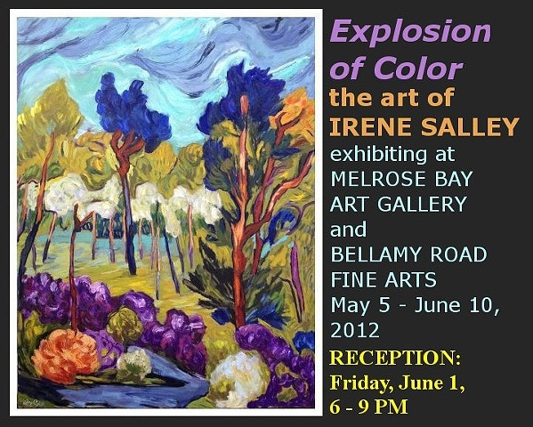 Explosion of Color The Art of Irene Salley