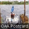 OAA Postcard for OPEN AIR 2010