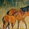 Horse Shapes, Horsescapes