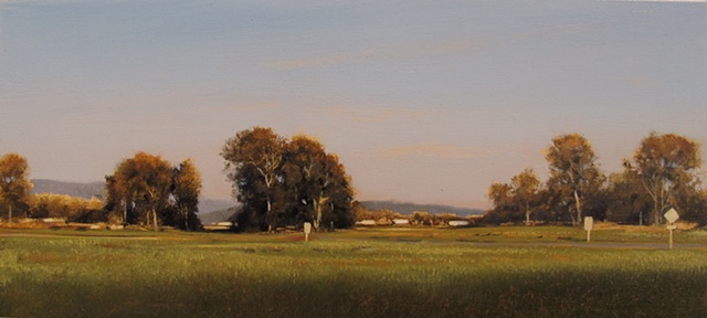 Summer Field at Dusk