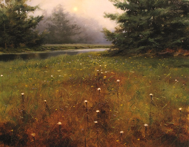 Low Land Meadow