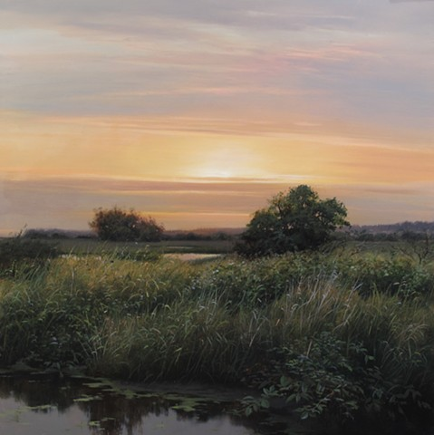 Serpentine Fen at Dusk