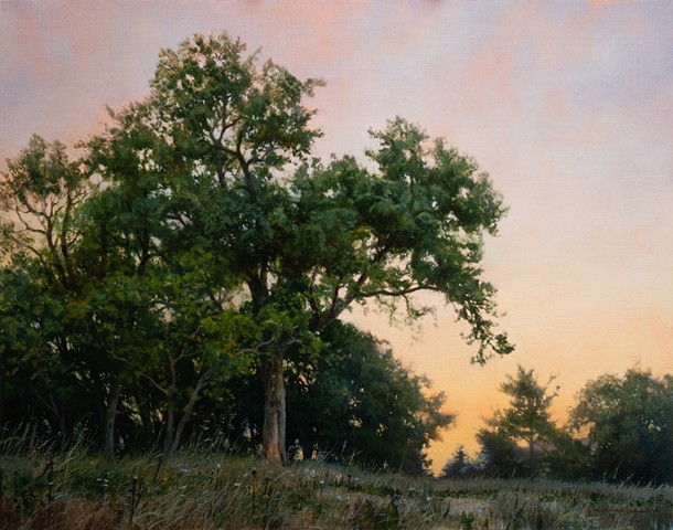"""Southern Grove under a Fading Light"""