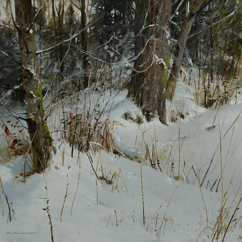 """Winter Thicket"""