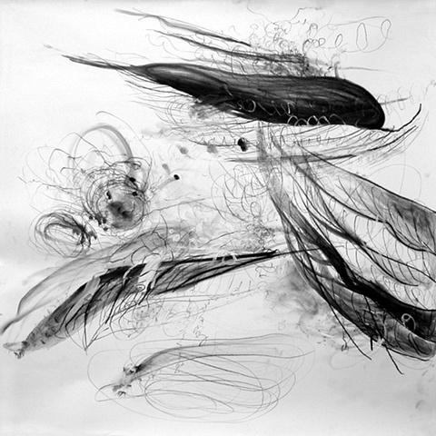 Wind, Palm
