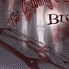 "Country Devils ""Broken Bones"" CD cover-a"