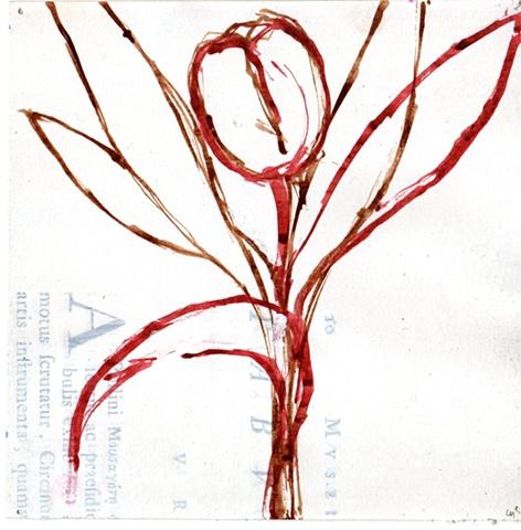 Flora No. 27