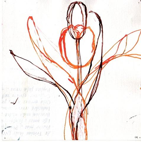 Flora No. 8