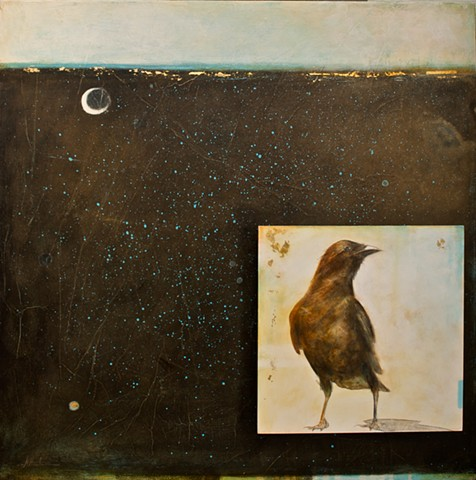 crow in moonlight