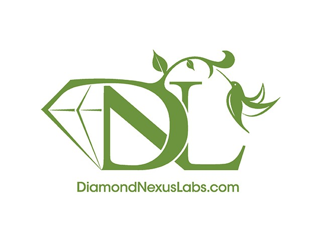 Diamond Nexus Labs  May 2009