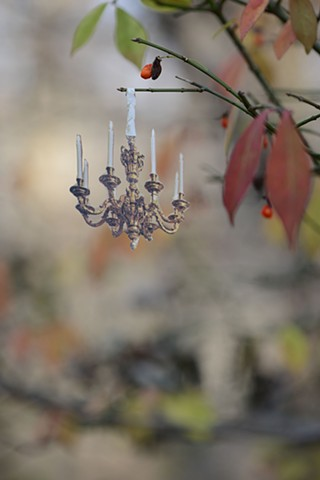 photograph of photography collage miniature still life nature domestic home chandelier