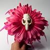 skull flower 22