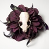 skull flower 14
