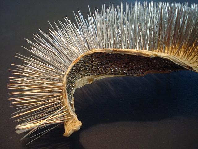 Untitled Cactus Leaf 5 (detail)