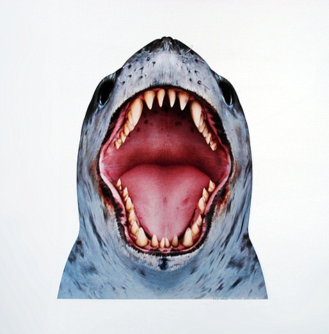 happy feet leopard seal mouth detail