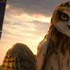 legends of guardians animallogic 11