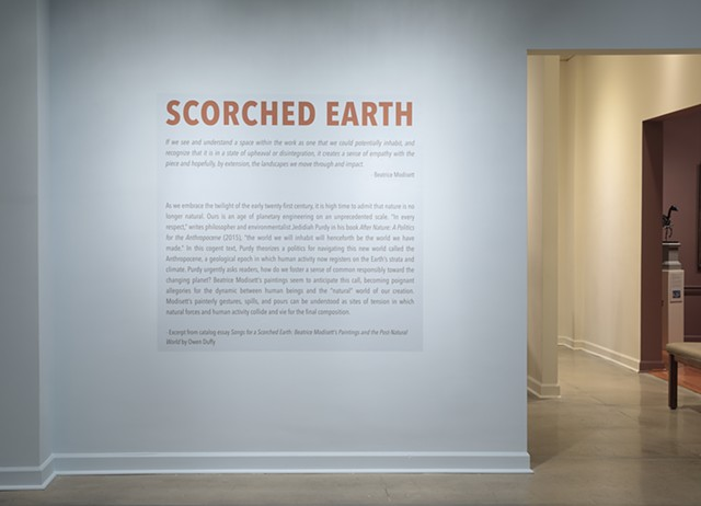 Installation view of Scorched Earth at Maier Museum of Art at Randolph College, Lynchburg VA January 31 - April 11th 2020