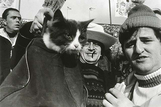 Grey Cup, 1972, 60th Gray Cup, Hamilton Tiger-cats, Saskatchewan Roughriders, Documentary, Black and White, Photography, Football, Edmonton