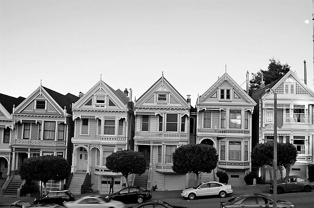 Painted Ladies -B&W