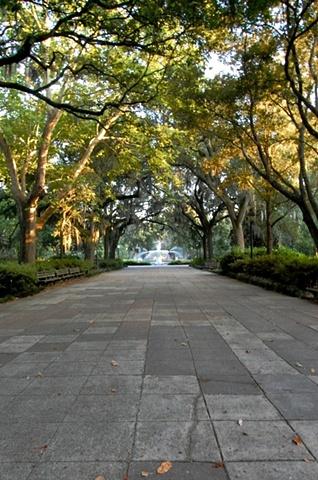 Forsyth Park #4