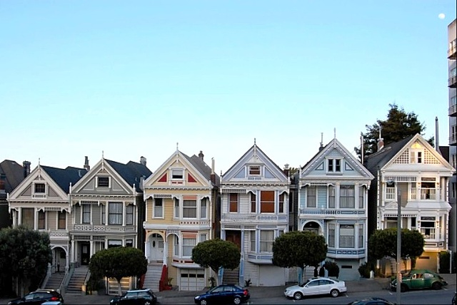 Painted Ladies #1