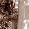 Bonaventure Cemetery #5- Sepia