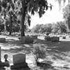 Bonaventure Cemetery #13- B&W