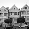 Painted Ladies B&W #2