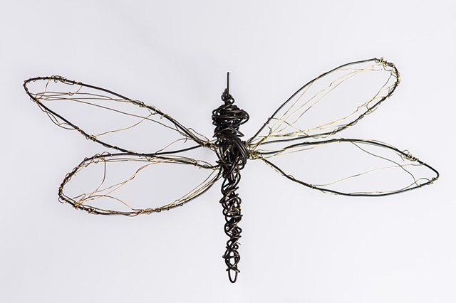 dragonflies, installation work