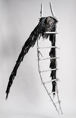 Vulture entwined in ladder