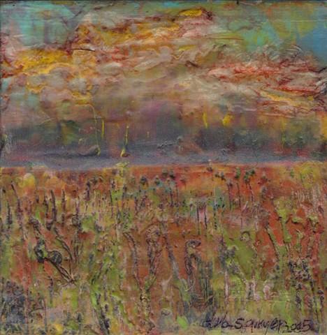 Open Field (sunrise blaze)
