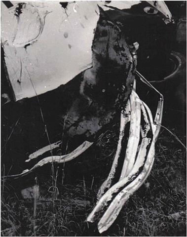 Junkyard Documentation (Shredded Grill)
