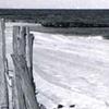 Shore Documentation