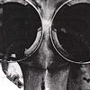 Junkyard Documentation (Tail Portrait)