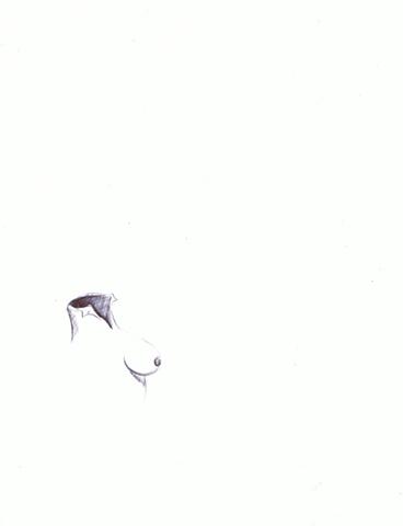 Ivan Girona - Surreal tit