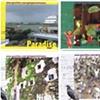 W y N - Postcards 5