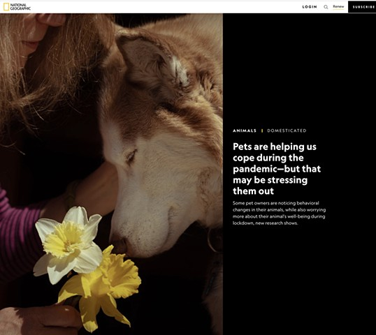 """Pets are helping us cope..."" National Geographic"