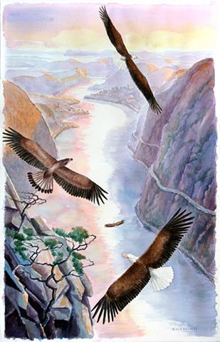Return of the Eagles
