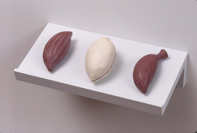 2004 Installation, Detail. Seeds, Set 4