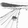 Leni in the Road