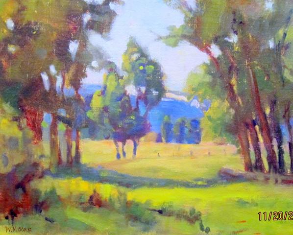 Summer Pastureland
