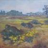Ram Pasture - September