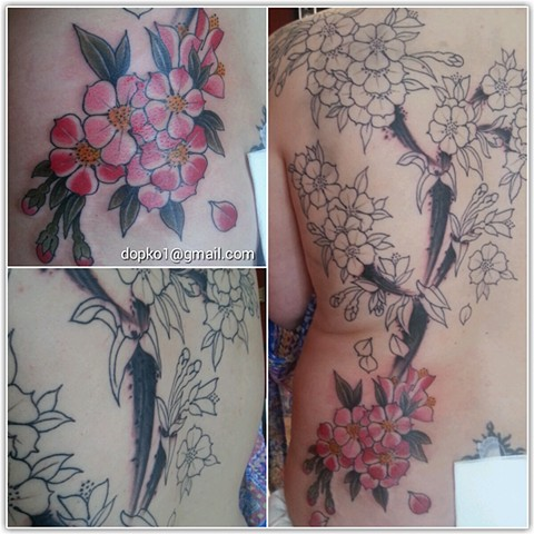Start of a back of blossoms