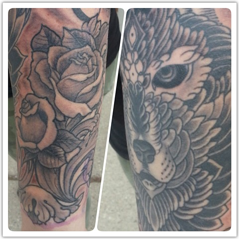 Closeups of roses and wolf