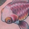 Fishfoot