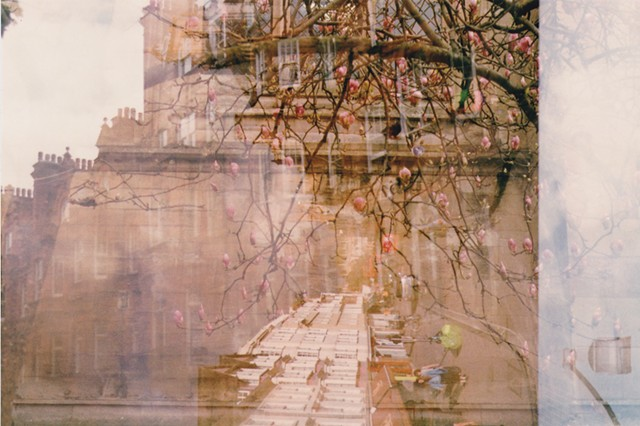 A lo-fi multiple exposure film photo of apple tree, pink flowers, Oxford, and London, England.  Sky, architecture, and soft colours.