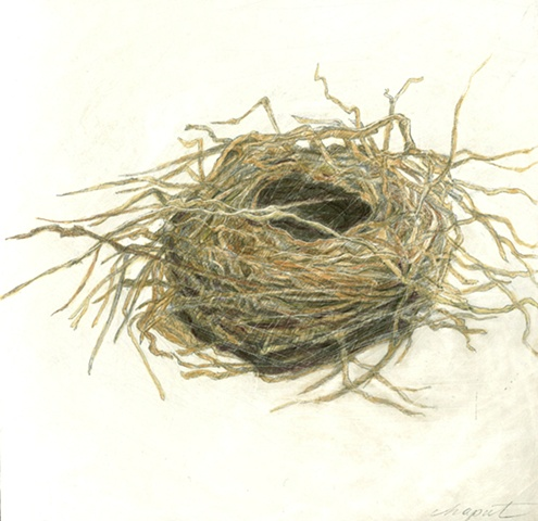 Twiggy Nest